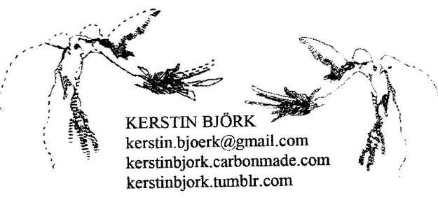 0909 Björk